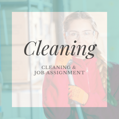 Cleaning and Job Assignment